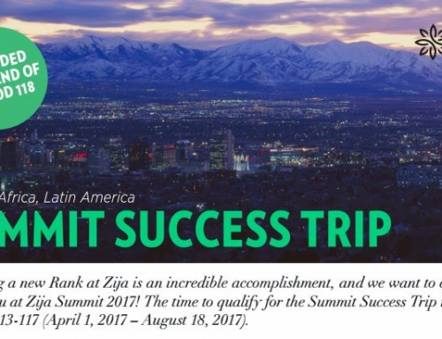 Zija 2017 Summit Success Trip