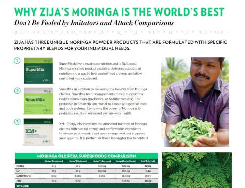 Moringa Oleifera Superfoods Comparison